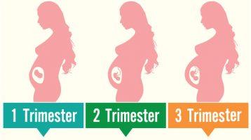 Mengenal Tahapan Usia Kehamilan Trimester 1, 2 dan 3